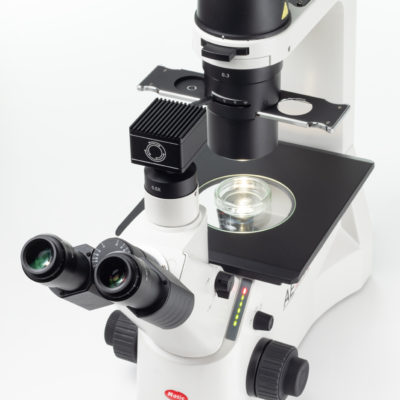 New microscope camera series – now for fluorescence as well!